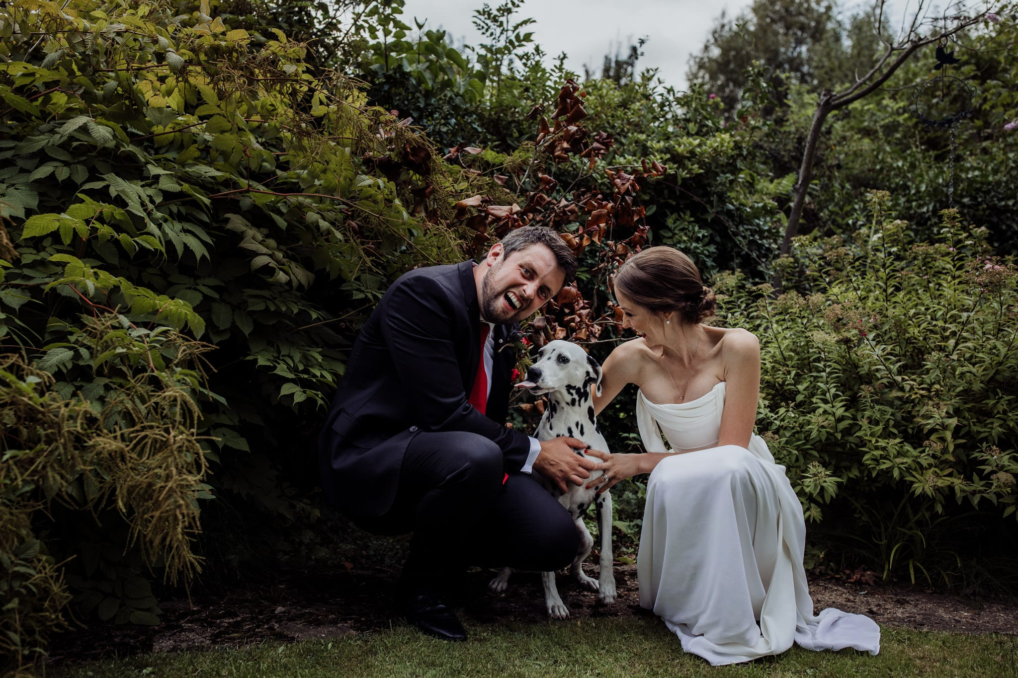 bride and groom portrait with their dog sticking his tongue out